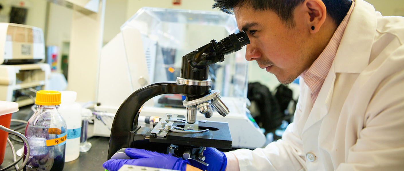 IPN student looking through a microscope